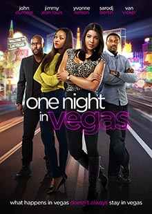 Box Art for One Night in Vegas