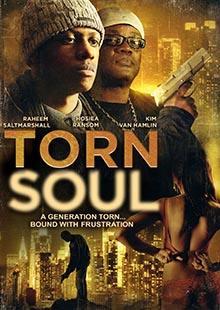 Box Art for Torn Soul