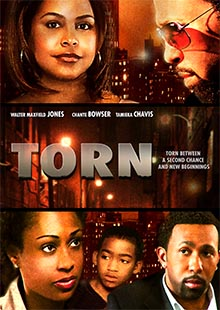 Box Art for Torn